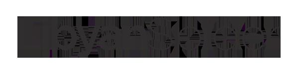 Libyan Spider LLC Logo